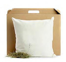 Zirben-Schlafkissen online kaufen