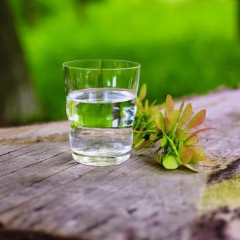 Gläser Mythos Lebensblume
