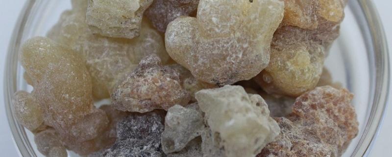 Myrrhe aus Peru, eine Räucher Rarität